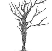 Feel the Wood. Un proyecto de Diseño e Ilustración de C. Germán González         - 04.12.2010