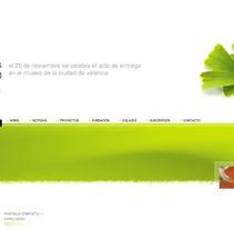 Fundación José Navarro. A Design, and Software Development project by Raúl Higueras         - 07.01.2011