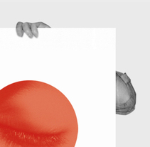 Japan. A  project by Gende Estudio         - 18.03.2011