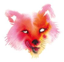Ilustraciones. Un proyecto de Ilustración de Higinia Garay Zarate         - 18.11.2011