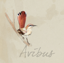 Avibus. Um projeto de Design e Ilustração de José Tomás Pérez del Moral         - 16.11.2013