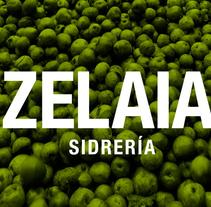 Zelaia. Un proyecto de Diseño, Diseño gráfico y Diseño Web de TGA +  - 31-10-2014