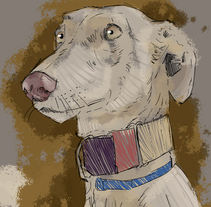 Ilustración Galga. A Illustration, and Painting project by Oscar Molina Morales - 18-05-2015