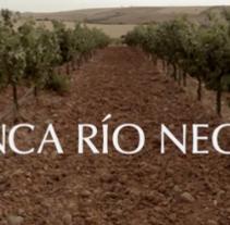Bodegas Río Negro - video corporativo. Un proyecto de Cine, vídeo, televisión, Br, ing e Identidad y Vídeo de albert llorens         - 29.07.2015
