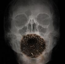 Naturaleza muerta. Un proyecto de Fotografía de Alejandro Moreno Paramio         - 15.11.2014