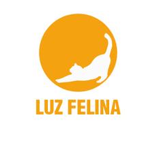 Luz felina. Um projeto de Br e ing e Identidade de Nerea Suárez         - 01.12.2015