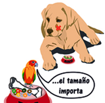 Perro y pajaro Illustrator. A Design project by Estela Calero Varszafski         - 10.08.2016