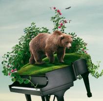 Bear Vk16 / Vk16. Um projeto de Design, Publicidade e Direção de arte de Vikö Sviäs         - 19.08.2016