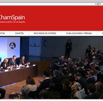 Funcionalidades para AmCham Spain. Un proyecto de Desarrollo Web de rseoaneb - 15-03-2015