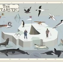 The Antarctic. Un proyecto de Ilustración vectorial de Pelopantón         - 20.04.2017