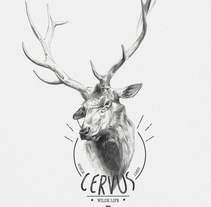 CERVUS. A Illustration project by miguel sastre - 30-08-2017