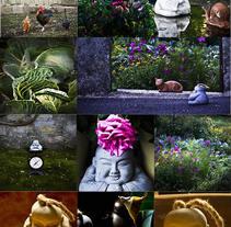 El camino de Michi @wayofmichi. A Photograph, and Digital retouching project by Pichuchi         - 08.10.2017