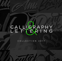Letterig & Caligrafía 2017. A Design, Calligraph, and Lettering project by Daniel Hosoya - 02-01-2018