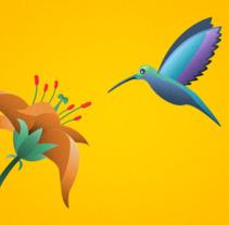 Colibrí. Um projeto de Motion Graphics, Animação e Ilustración vectorial de Nico Medina         - 01.03.2018